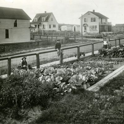 Lian Family Gardens, Morris Location